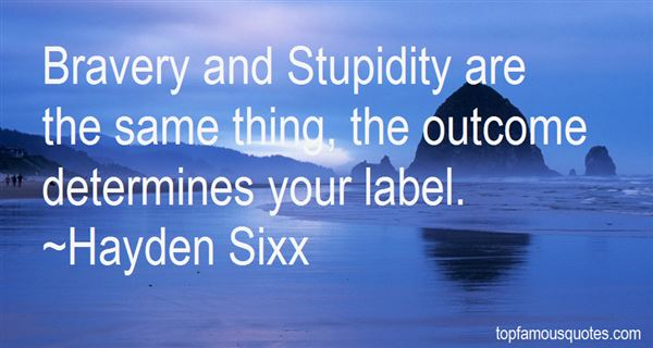 Quotes About Bravery And Stupidity