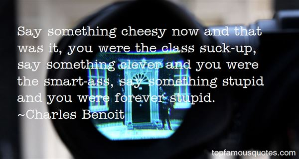 Quotes About Clever And Stupid