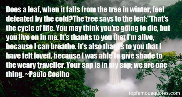 Quotes About Cold