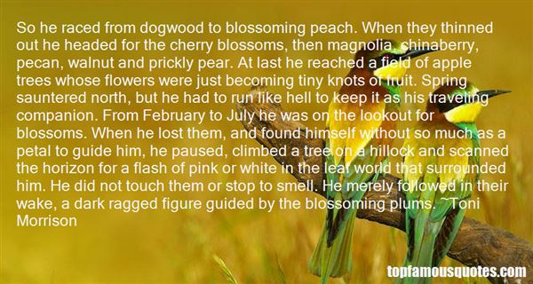 Quotes About Dogwood Blossoms