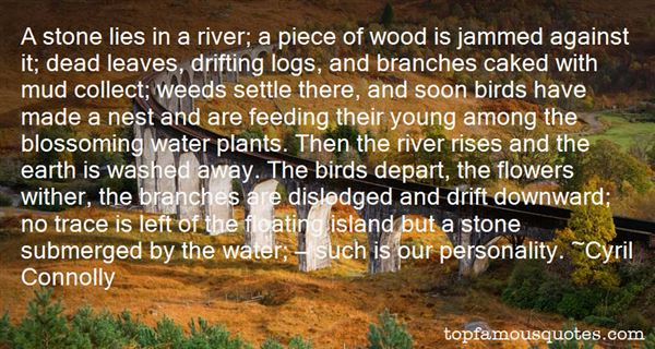 Quotes About Feeding Birds