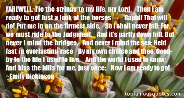 Quotes About Horses And Life
