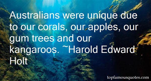Quotes About Kangaroo