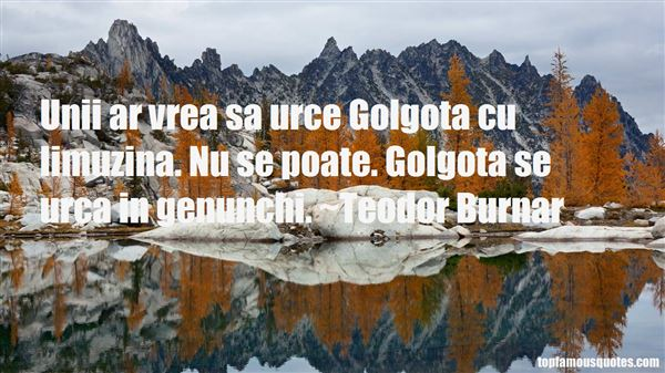 Quotes About Limuzina