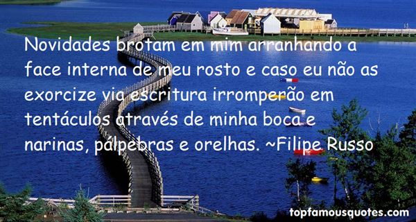 Quotes About Novidade