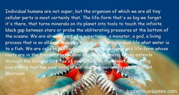 Quotes About Precambrian