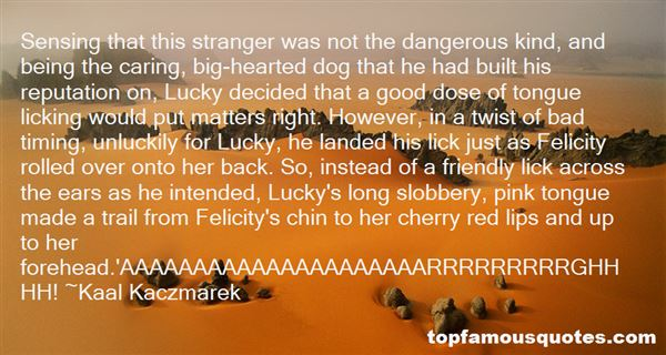 Quotes About Stranger Danger