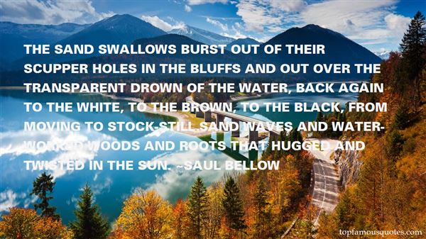 Quotes About Swallows