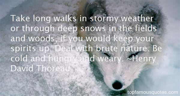 Quotes About Walks In Nature
