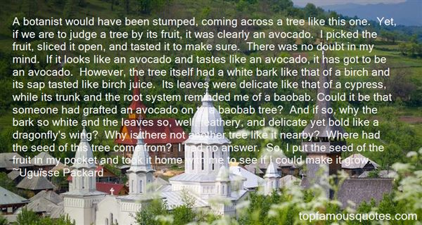 Quotes About Baobab