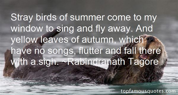 Quotes About Birds Songs