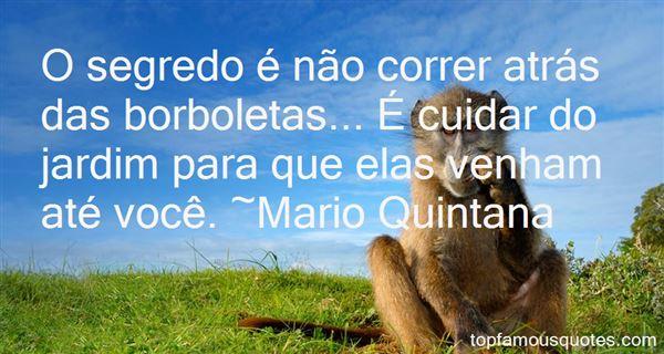 Quotes About Borboleta