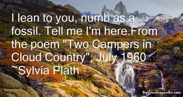 Quotes About Camper