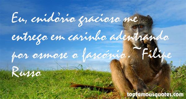 Quotes About Carinho