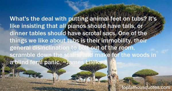 Quotes About Immobility
