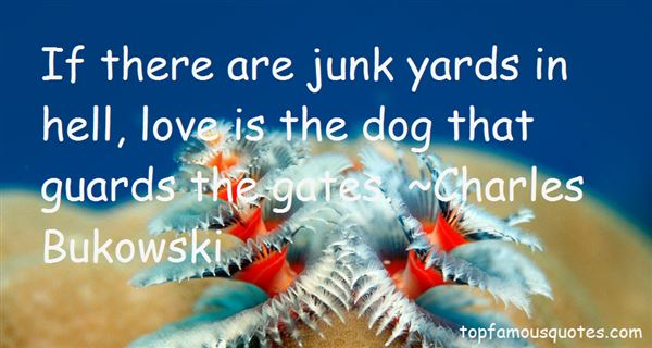 Quotes About Junk Yards