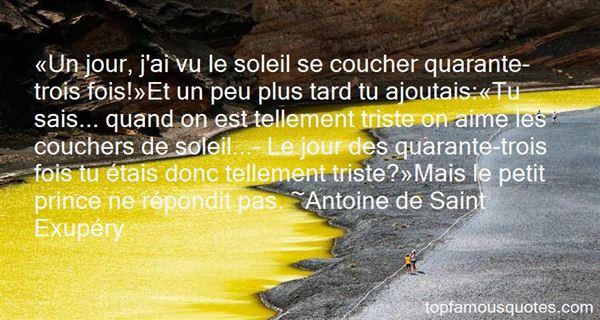 Quotes About Le Petit Prince