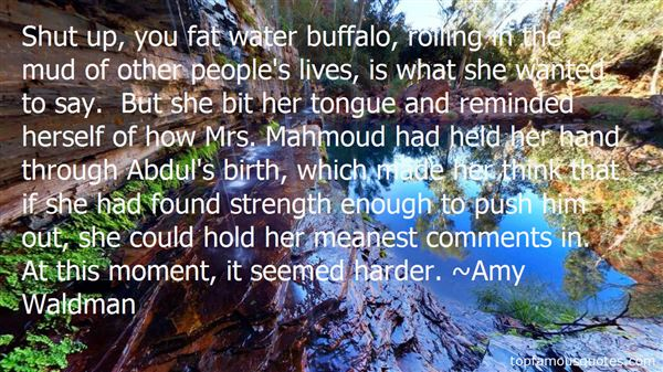 Quotes About Mahmoud
