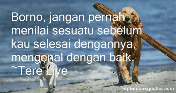 Quotes About Menil