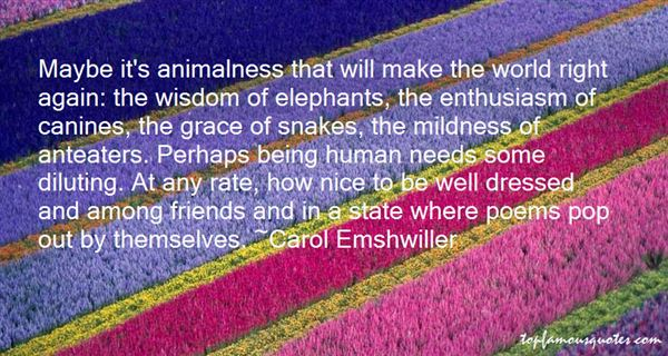 Quotes About Nice Friends