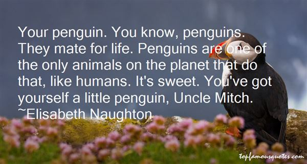 Quotes About Penguins Mate For Life
