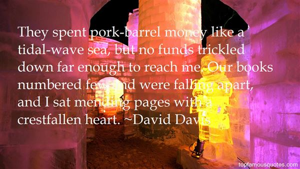 Quotes About Pork Barrel