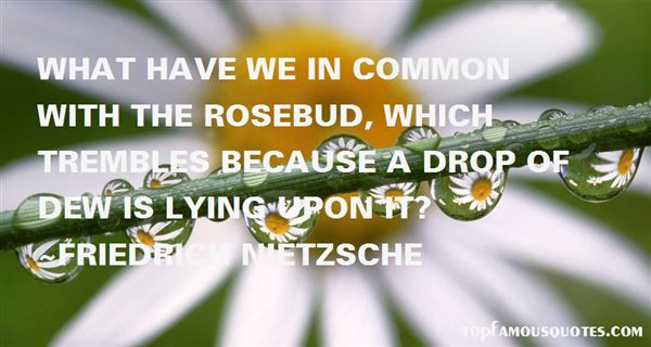 Quotes About Rosebud