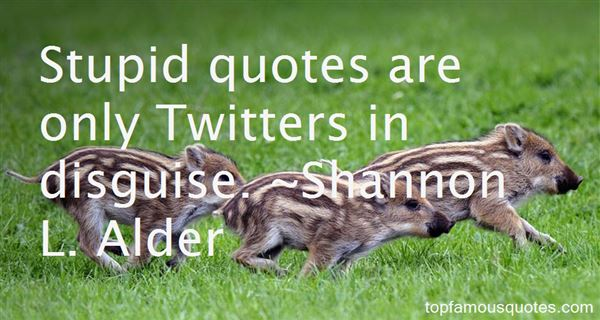 Quotes About Stupid Quotes