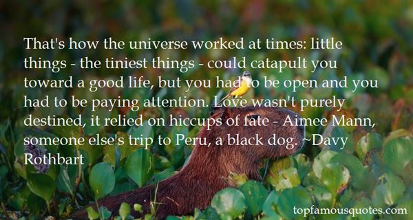 Quotes About Universe And Fate