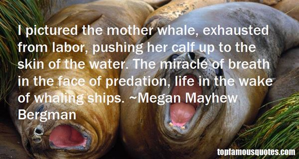 Quotes About Whaling