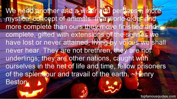 Quotes About Brethren