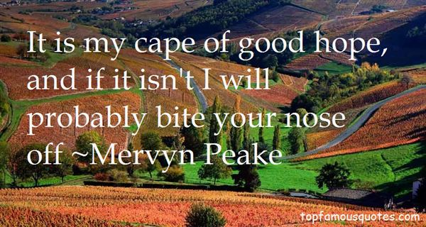 Quotes About Cape Of Good Hope