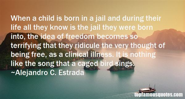 Quotes About Jail Freedom