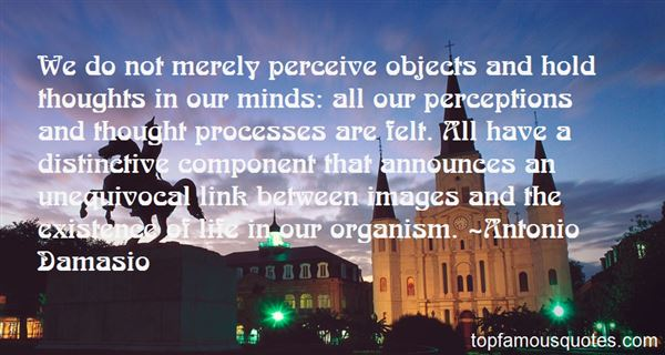 Quotes About Perceive