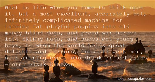 Quotes About Playful Dogs
