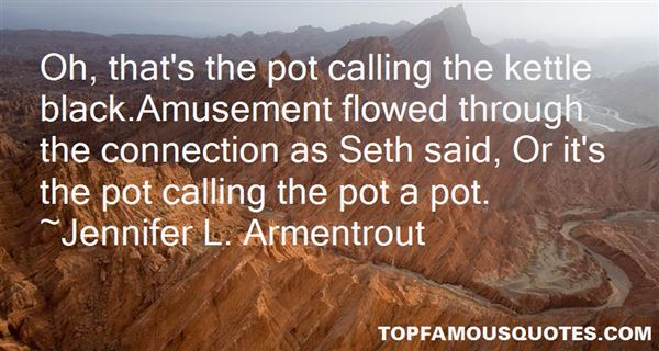 Quotes About Pot Calling The Kettle Black