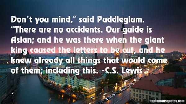 Quotes About Puddleglum
