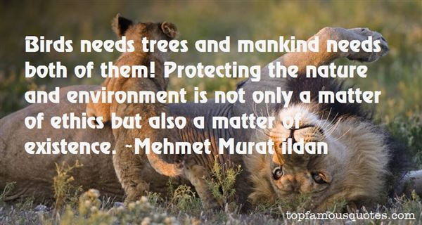 Quotes About Trees And Nature