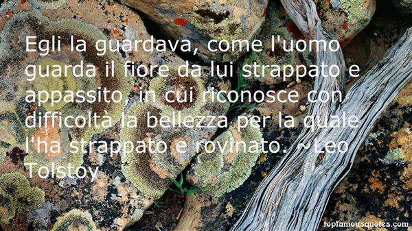Quotes About Bellezza