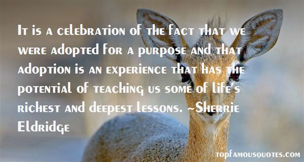 Quotes About Celebration Of Life