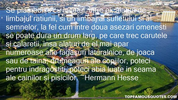 Quotes About Drume