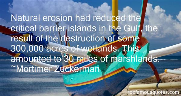 Quotes About Marshlands