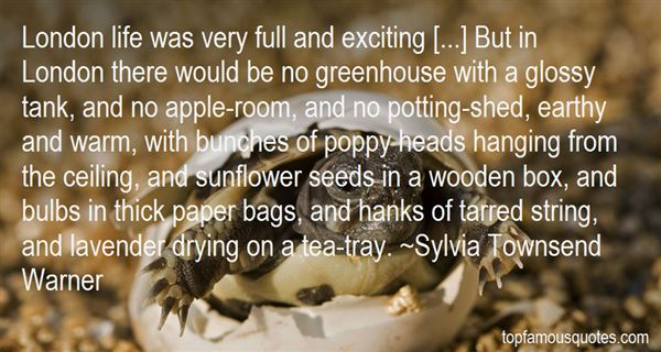 Quotes About Paper Bags
