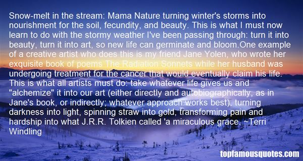 Quotes About Stormy Life