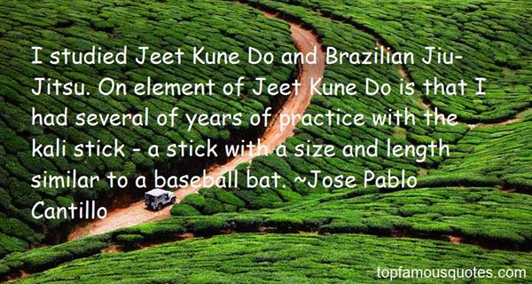 Quotes About Brazilian Jiu Jitsu