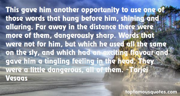 Quotes About Dangerous Words