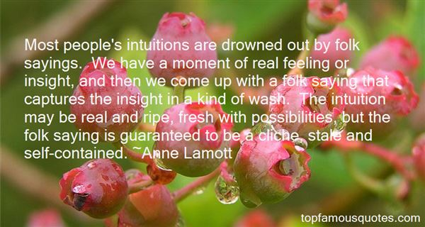 Quotes About Intuitions