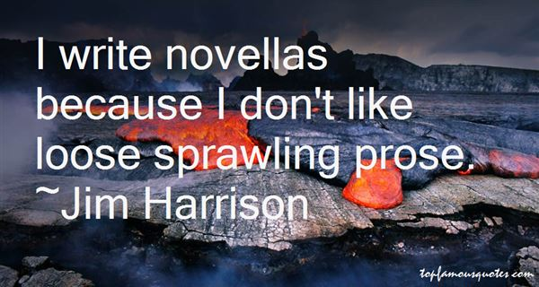 Quotes About Novellas