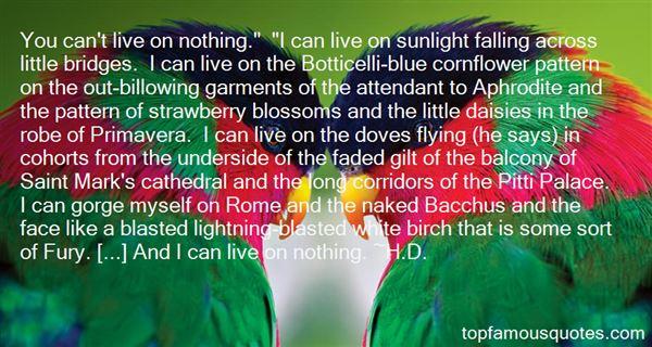 Quotes About Primavera