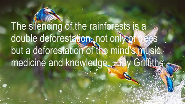 Quotes About Rainforest